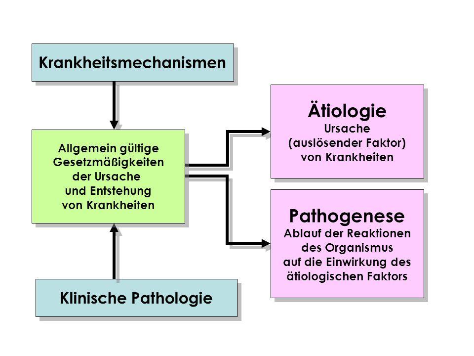 Krankheitsmechanismen ätiologischen Faktors