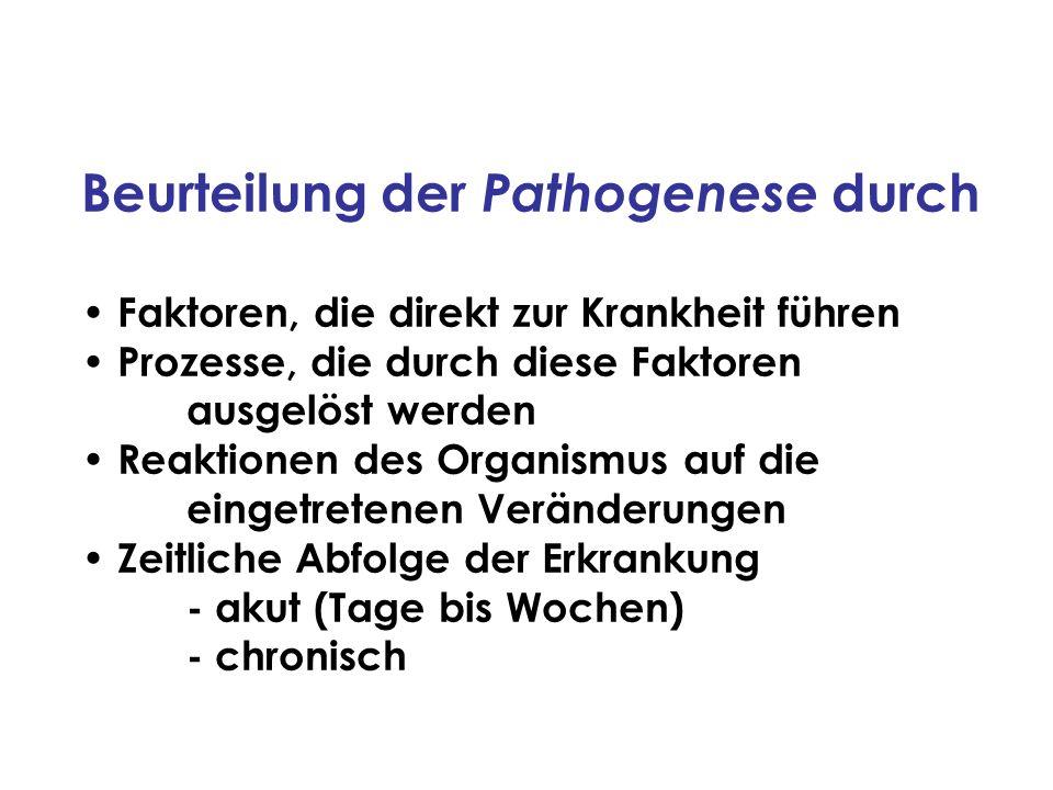 Beurteilung der Pathogenese durch