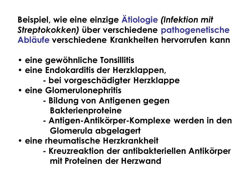 Beispiel, wie eine einzige Ätiologie (Infektion mit