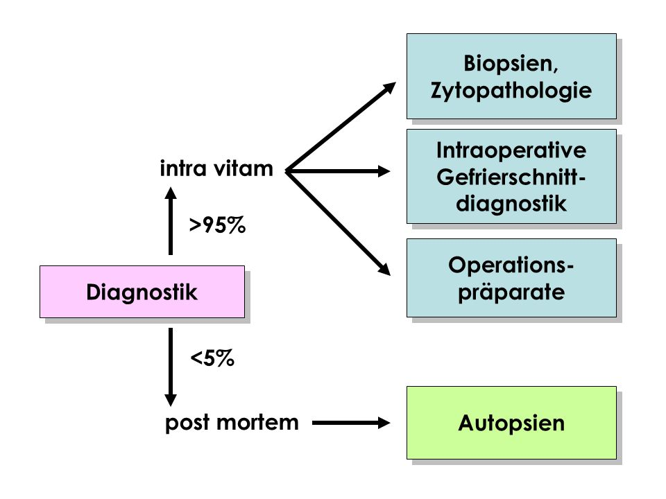Biopsien, Zytopathologie. Intraoperative. Gefrierschnitt- diagnostik. intra vitam. >95% Operations-