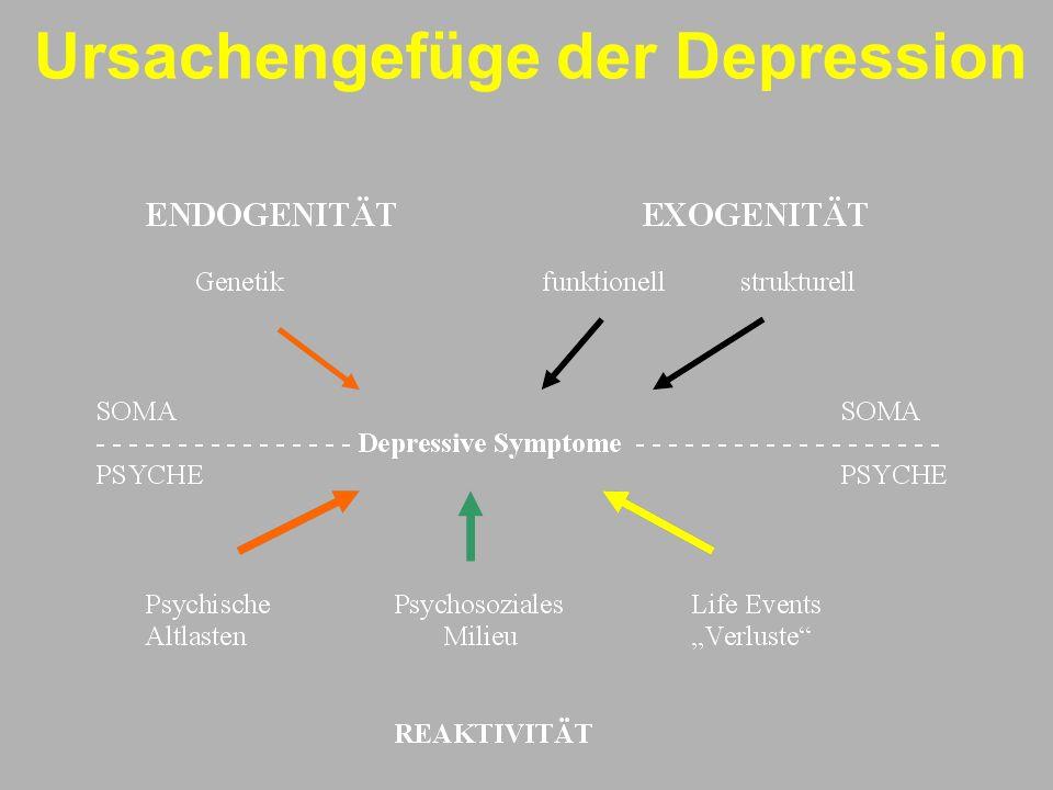 Ursachengefüge der Depression