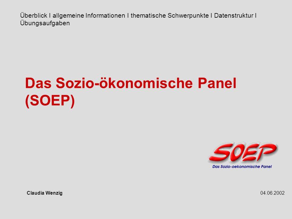 Das Sozio-ökonomische Panel (SOEP)