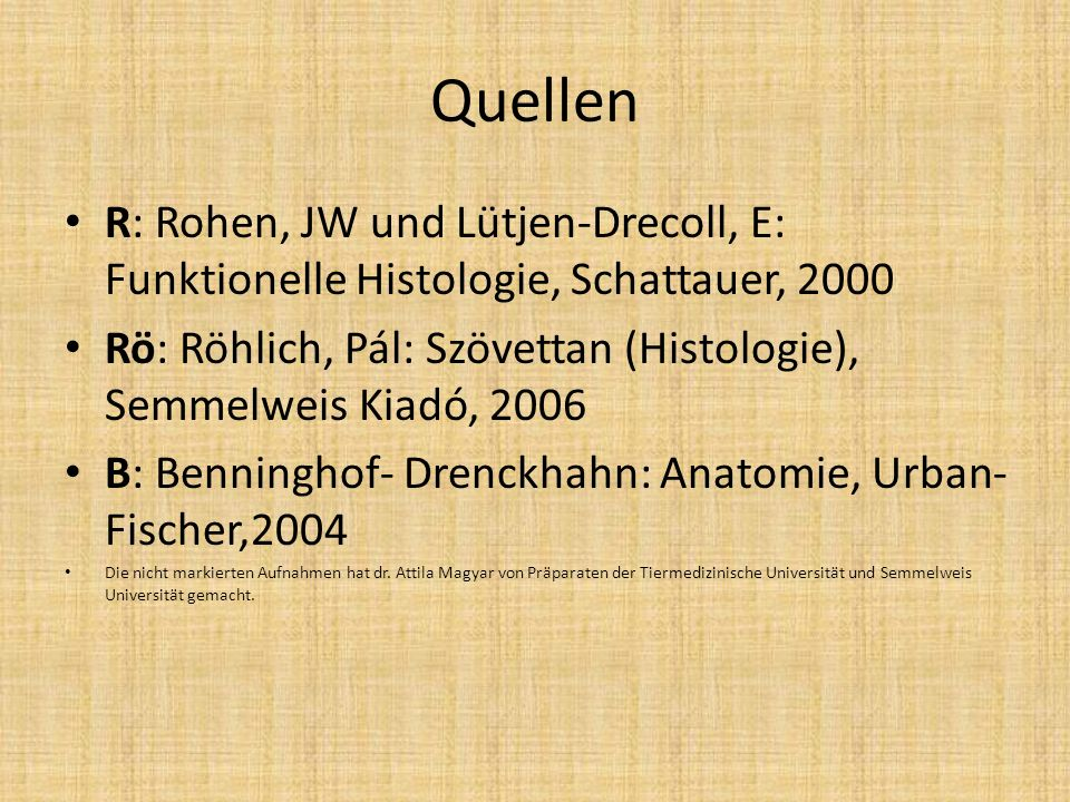 Quellen R: Rohen, JW und Lütjen-Drecoll, E: Funktionelle Histologie, Schattauer, 2000.