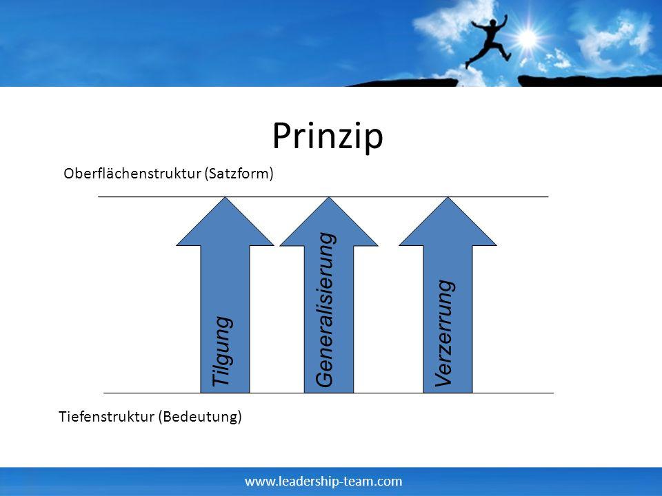 Prinzip Generalisierung Verzerrung Tilgung
