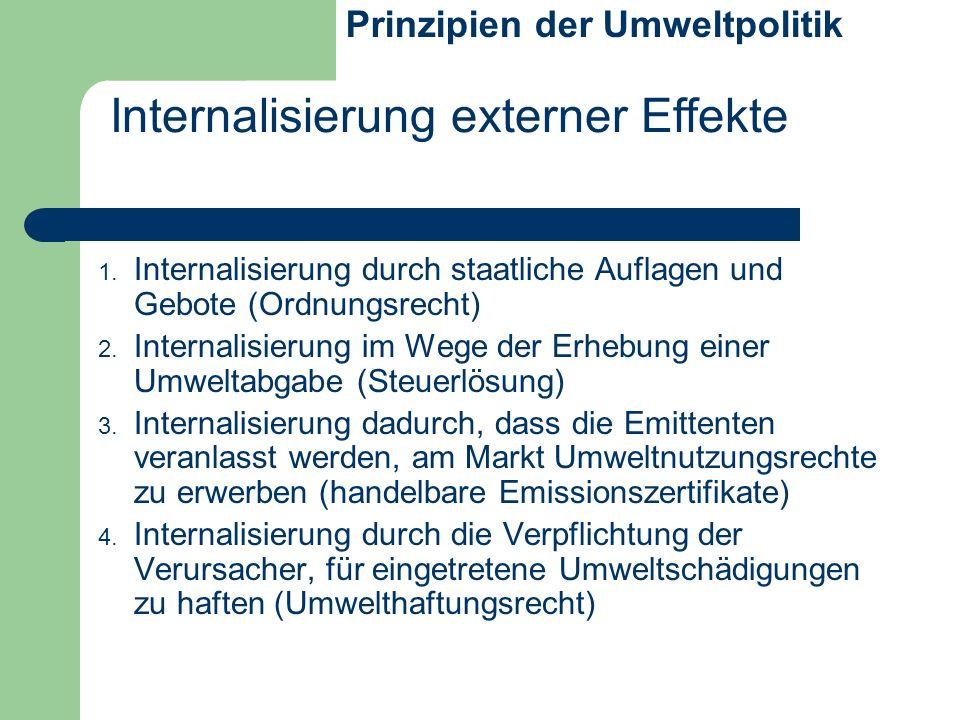 Internalisierung externer Effekte