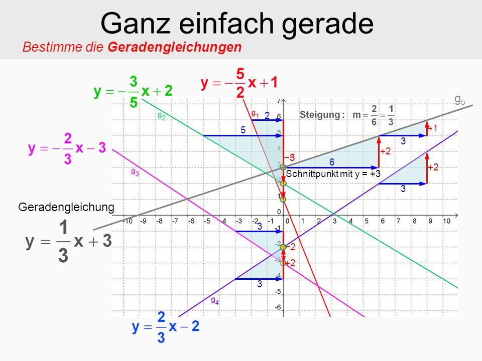Ganz einfach gerade Bestimme die Geradengleichungen g5