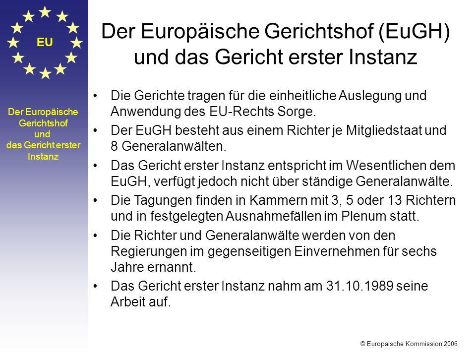 Der Europäische Gerichtshof (EuGH) und das Gericht erster Instanz
