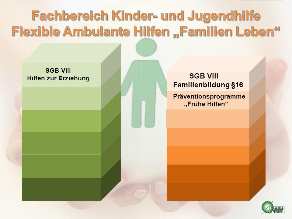 """Fachbereich Kinder- und Jugendhilfe Flexible Ambulante Hilfen """"Familien Leben"""
