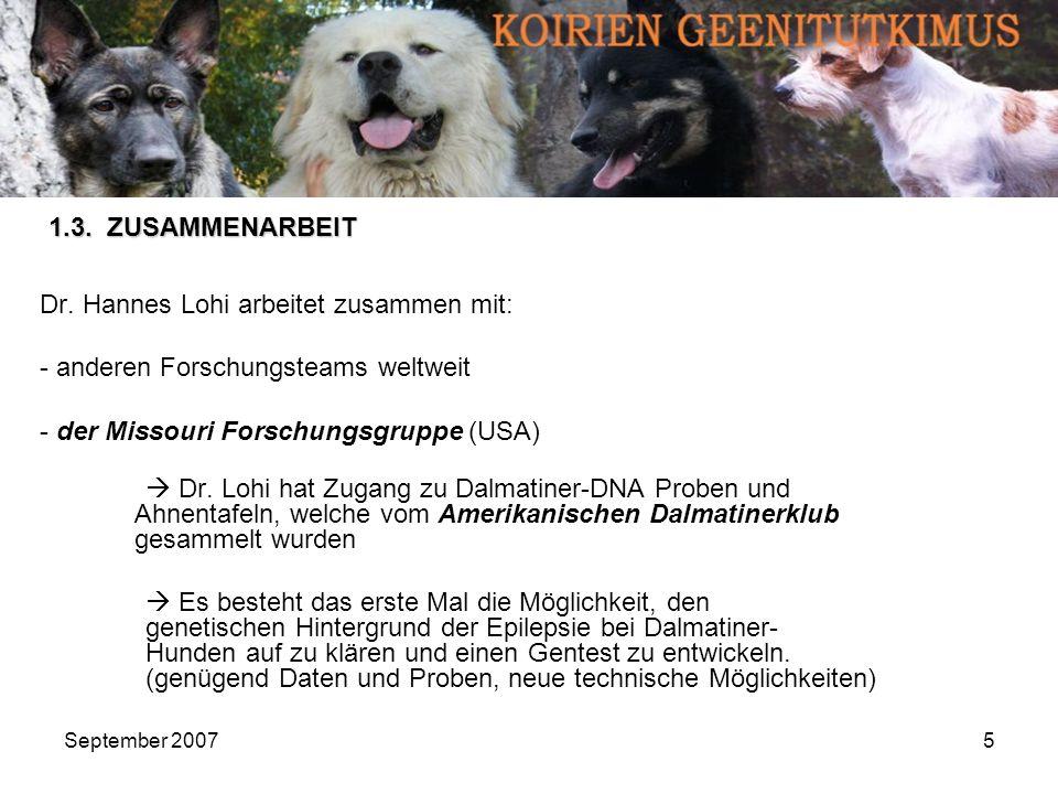 Dr. Hannes Lohi arbeitet zusammen mit: