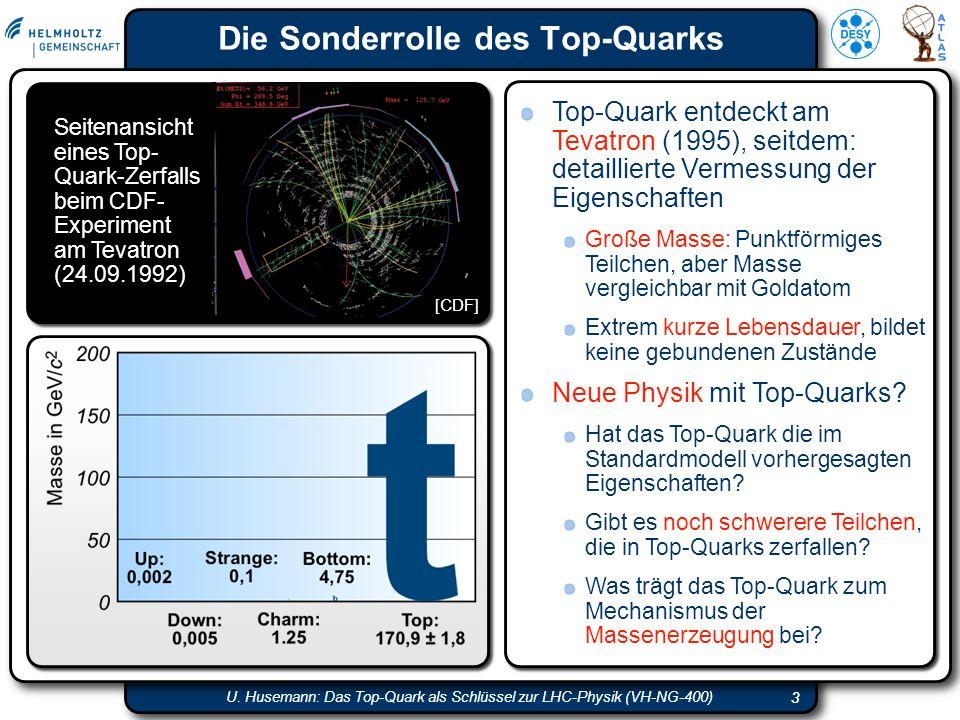 Die Sonderrolle des Top-Quarks