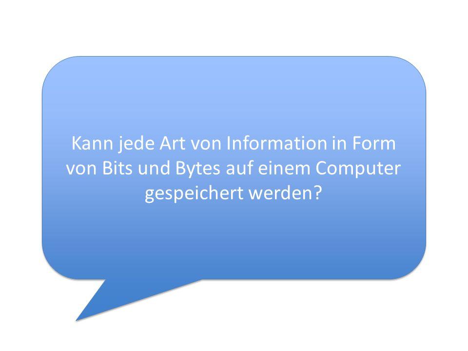 Kann jede Art von Information in Form von Bits und Bytes auf einem Computer gespeichert werden