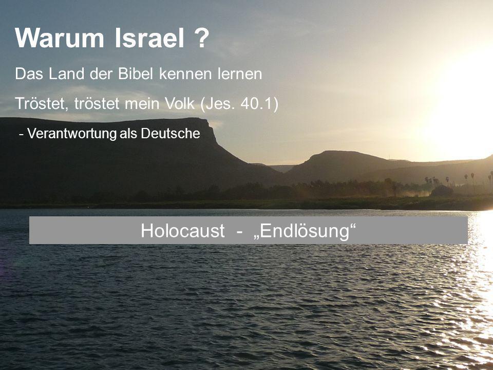 "Holocaust - ""Endlösung"