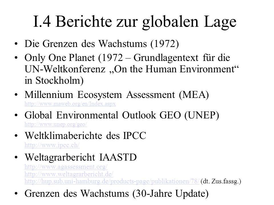I.4 Berichte zur globalen Lage