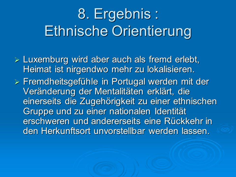 8. Ergebnis : Ethnische Orientierung