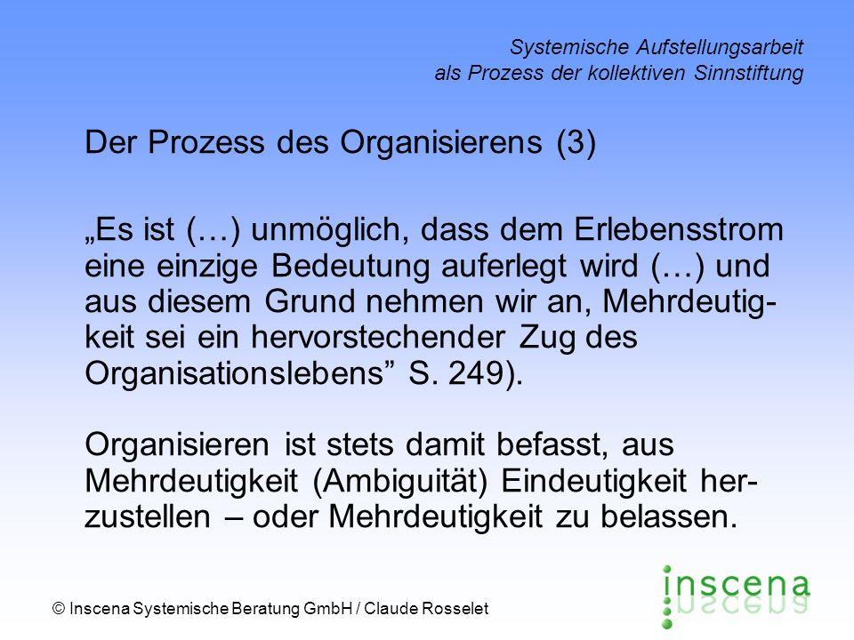 Der Prozess des Organisierens (3)