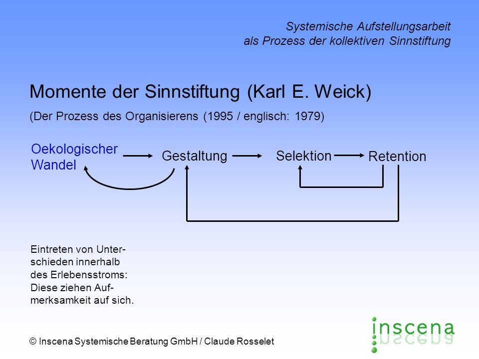 Momente der Sinnstiftung (Karl E. Weick)