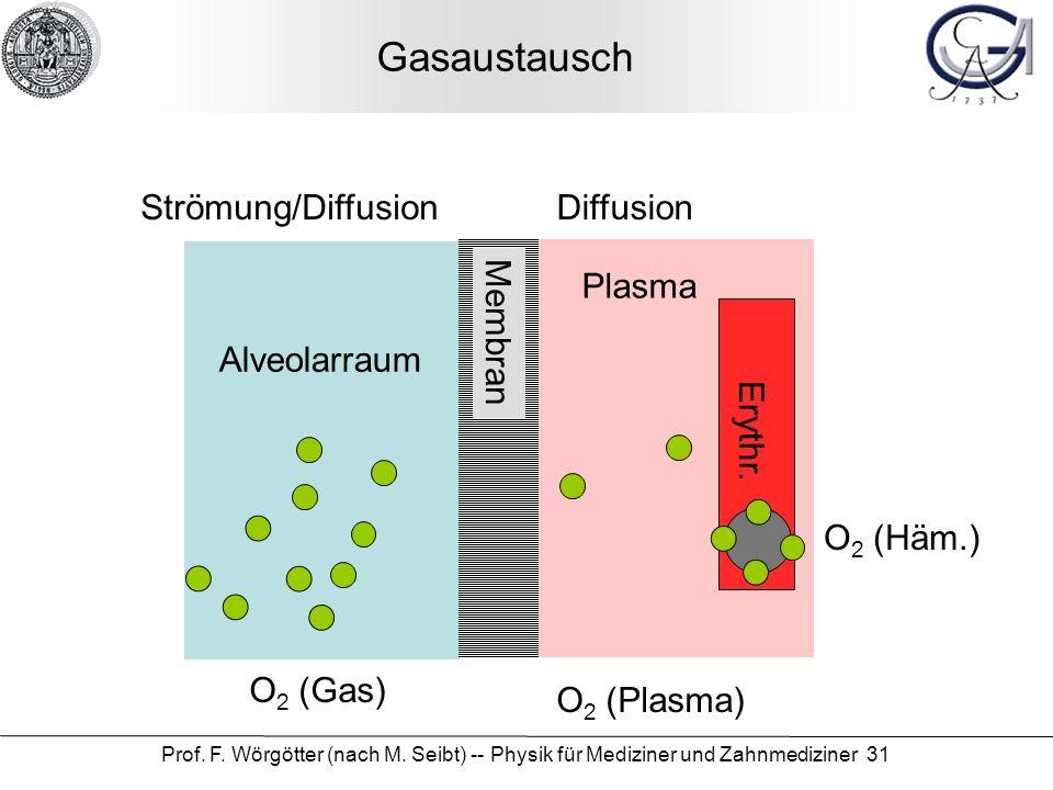 Gasaustausch Strömung/Diffusion Diffusion Plasma Membran Alveolarraum