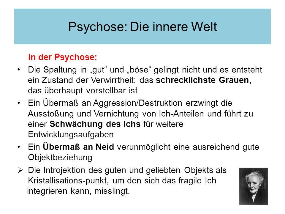 Psychose: Die innere Welt