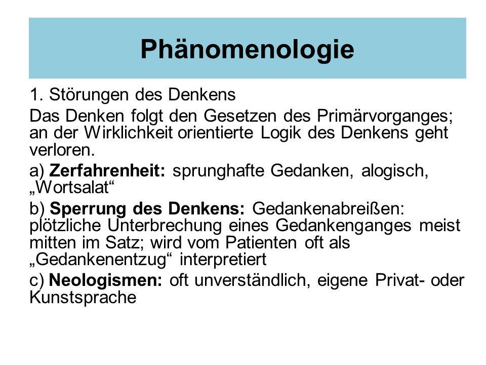 Phänomenologie