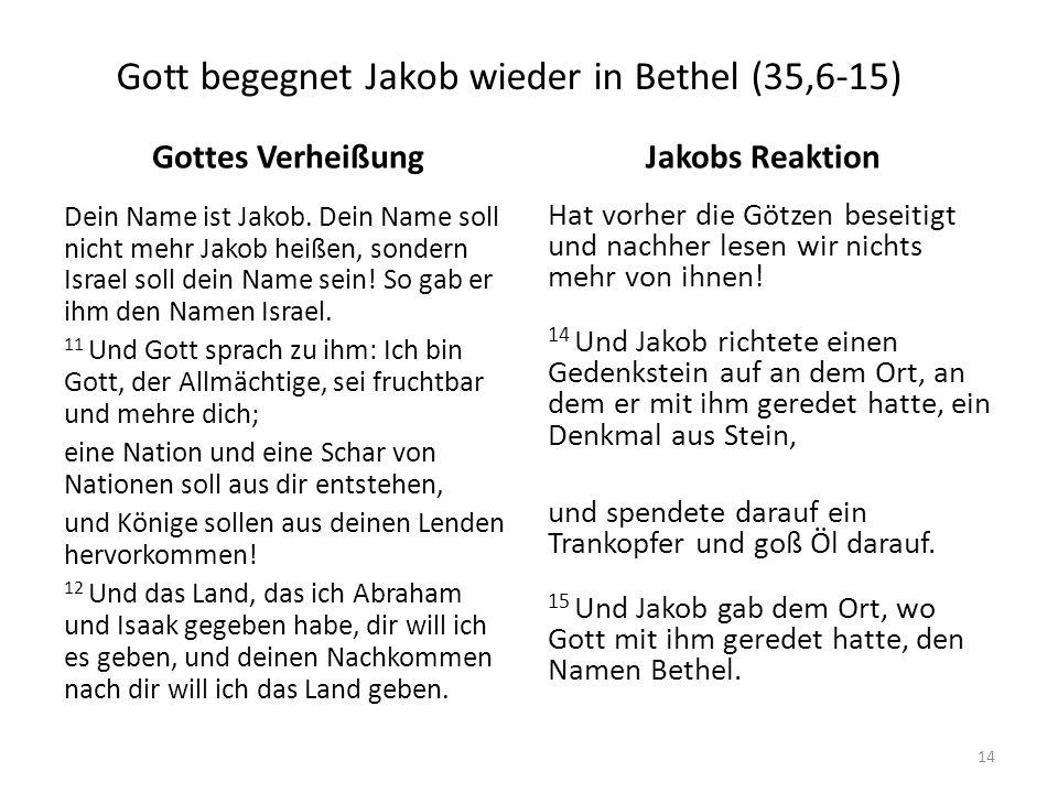 Gott begegnet Jakob wieder in Bethel (35,6-15)
