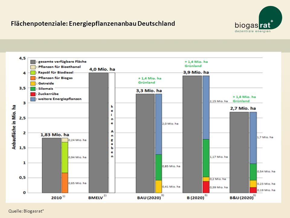 Flächenpotenziale: Energiepflanzenanbau Deutschland