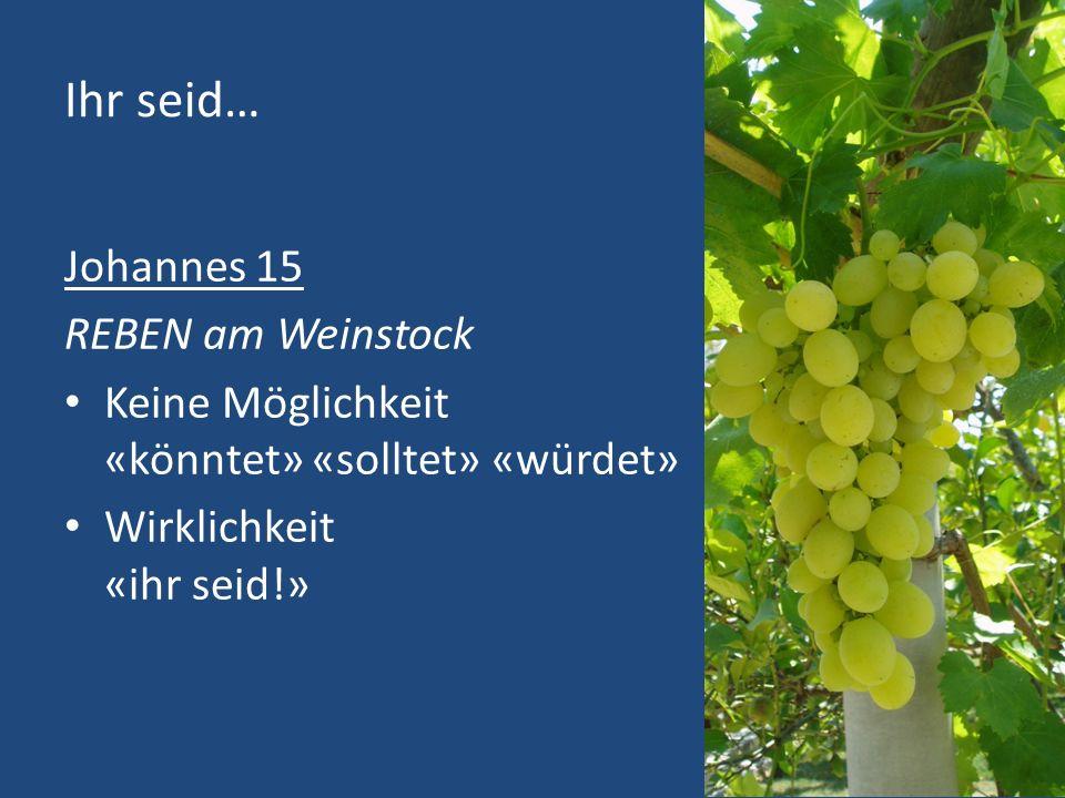 Ihr seid… Johannes 15 REBEN am Weinstock