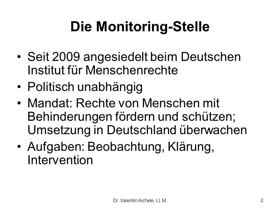 Die Monitoring-Stelle