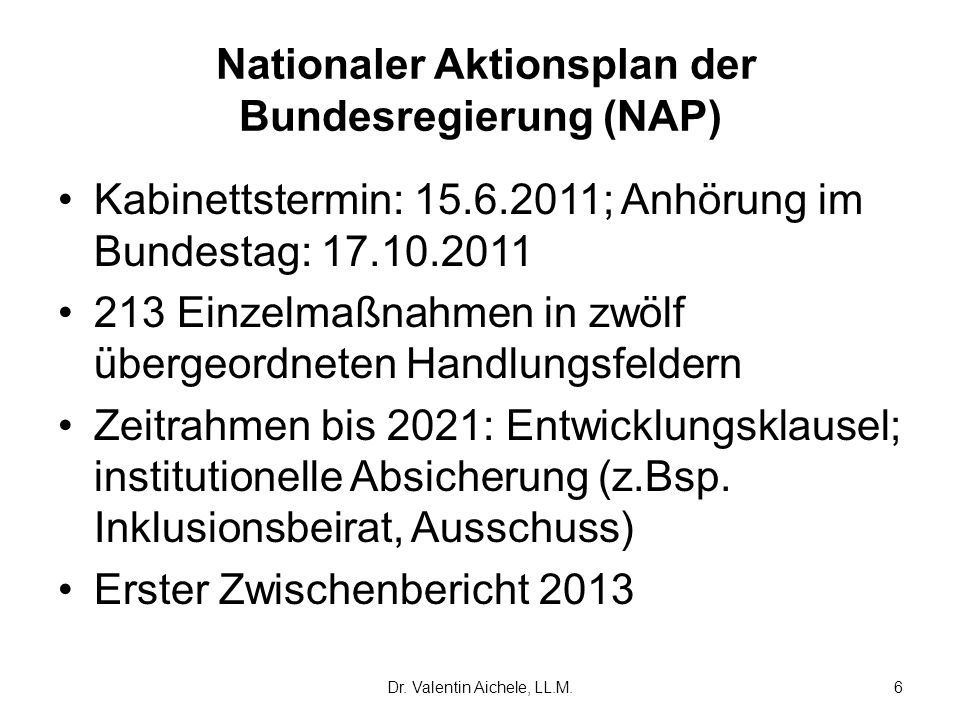 Nationaler Aktionsplan der Bundesregierung (NAP)