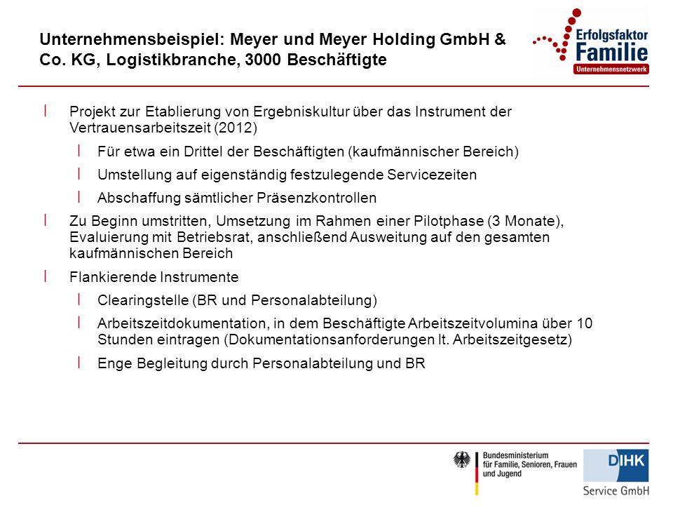 Unternehmensbeispiel: Meyer und Meyer Holding GmbH & Co