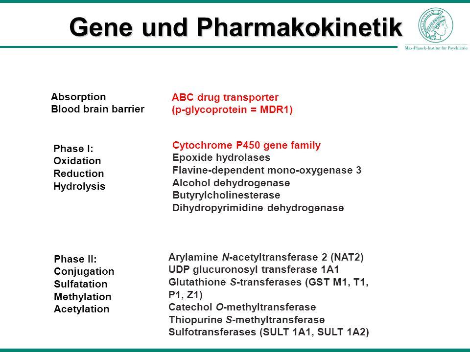 Gene und Pharmakokinetik