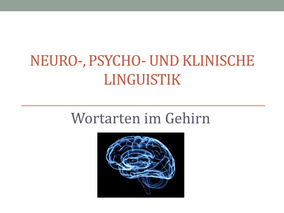Neuro-, Psycho- und Klinische Linguistik