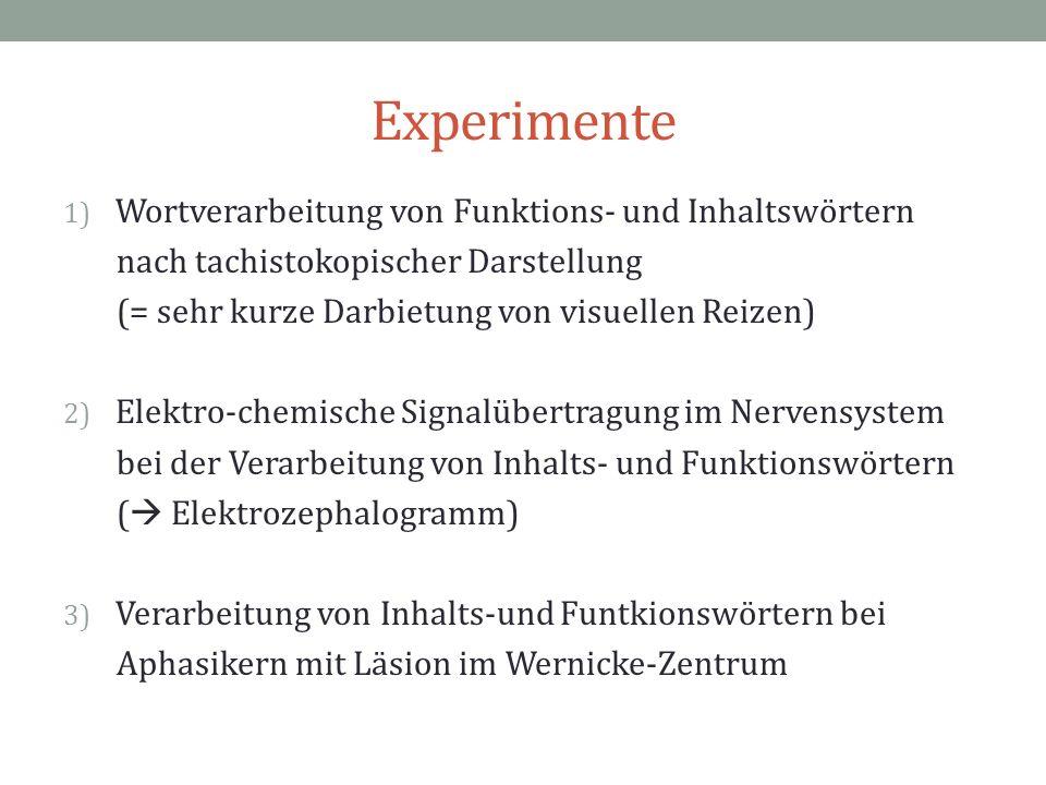 Experimente Wortverarbeitung von Funktions- und Inhaltswörtern