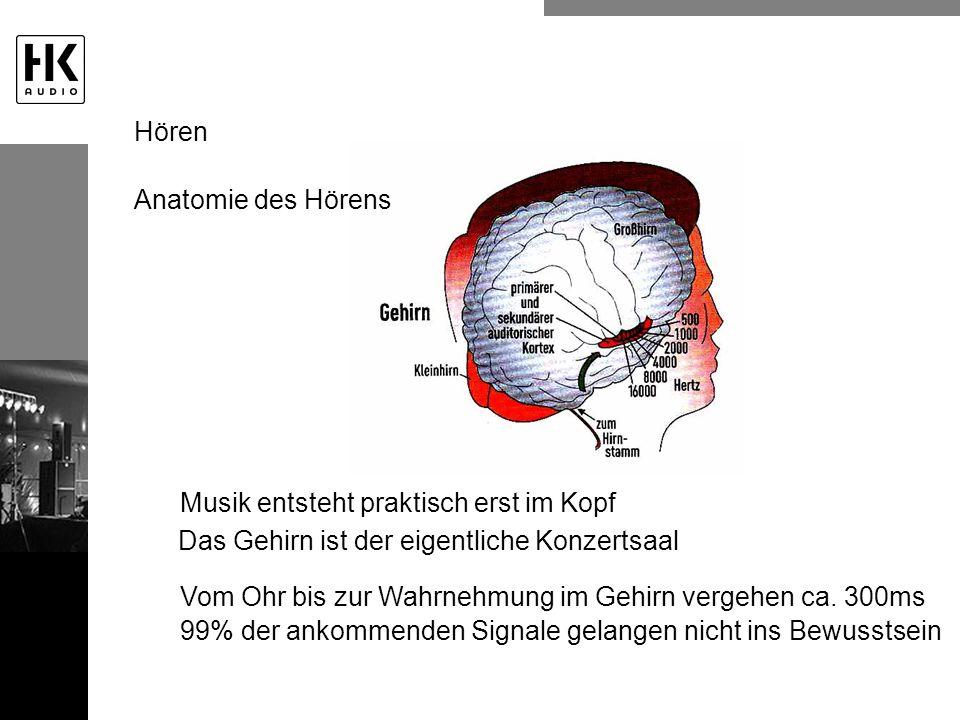Hören Anatomie des Hörens. Musik entsteht praktisch erst im Kopf. Das Gehirn ist der eigentliche Konzertsaal.
