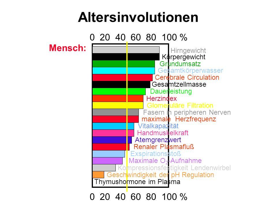 Altersinvolutionen 0 20 40 60 80 100 % Mensch: 0 20 40 60 80 100 %