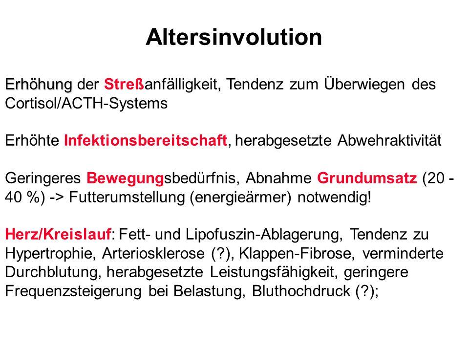 Altersinvolution Erhöhung der Streßanfälligkeit, Tendenz zum Überwiegen des Cortisol/ACTH-Systems.