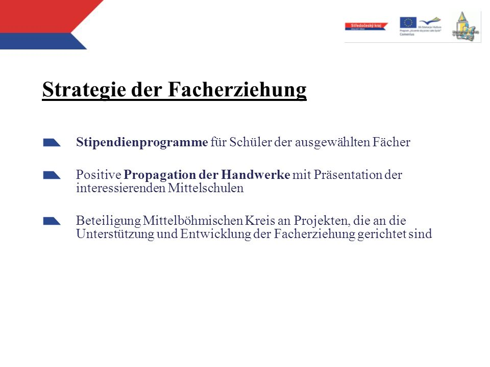 Strategie der Facherziehung