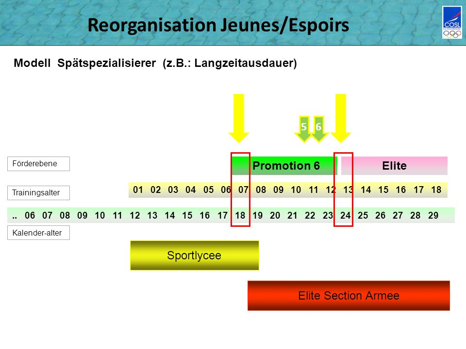 Reorganisation Jeunes/Espoirs