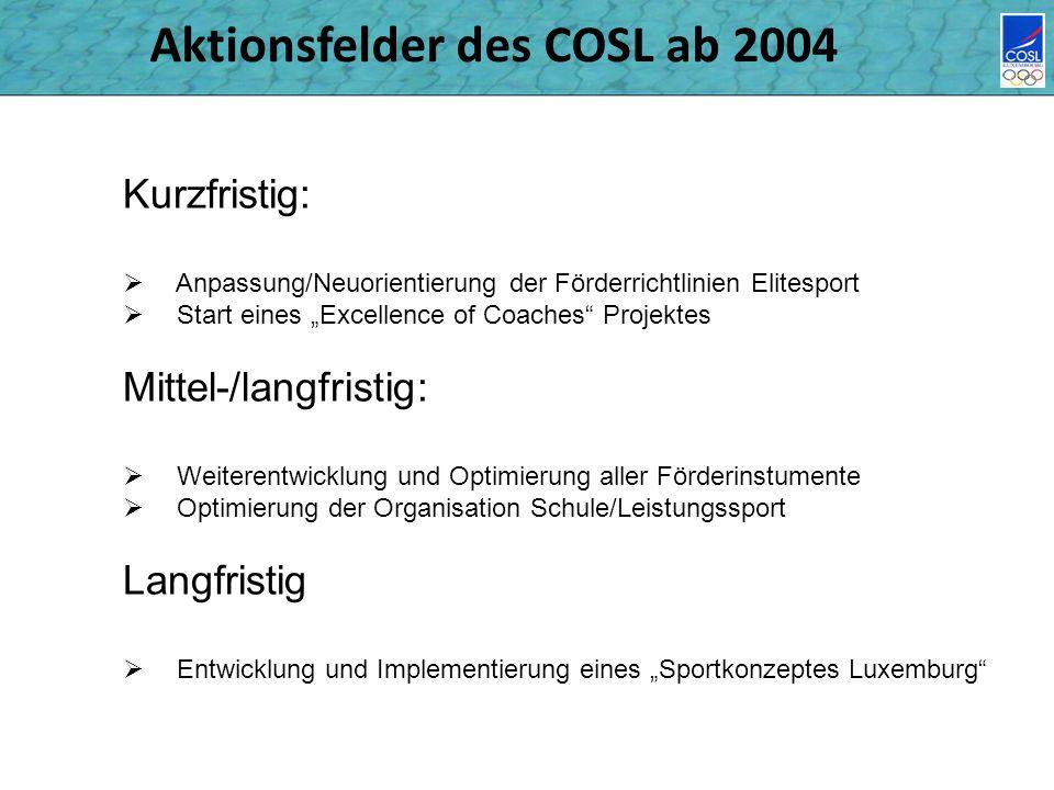 Aktionsfelder des COSL ab 2004