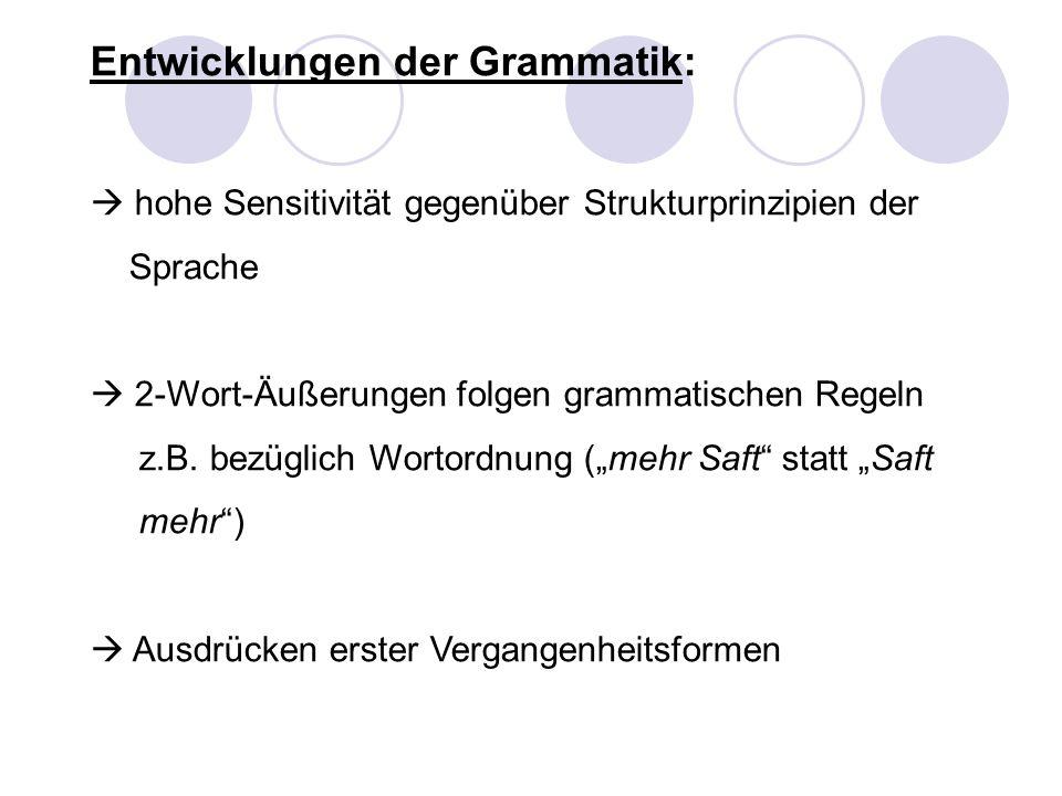 Entwicklungen der Grammatik: