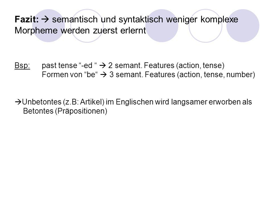 Fazit:  semantisch und syntaktisch weniger komplexe