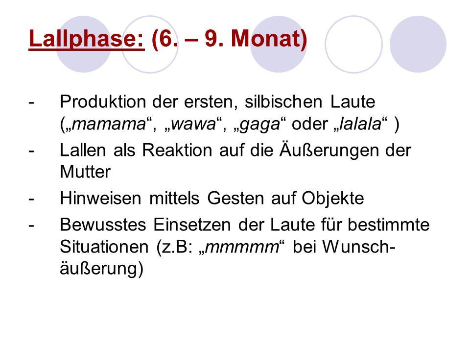 """Lallphase: (6. – 9. Monat) Produktion der ersten, silbischen Laute (""""mamama , """"wawa , """"gaga oder """"lalala )"""