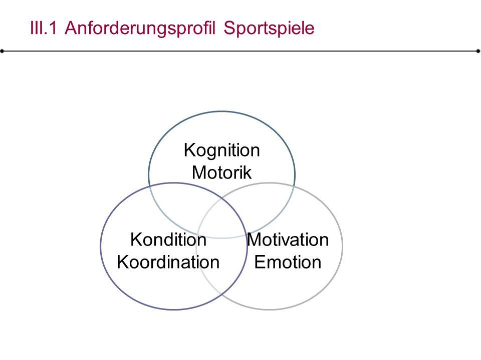 III.1 Anforderungsprofil Sportspiele
