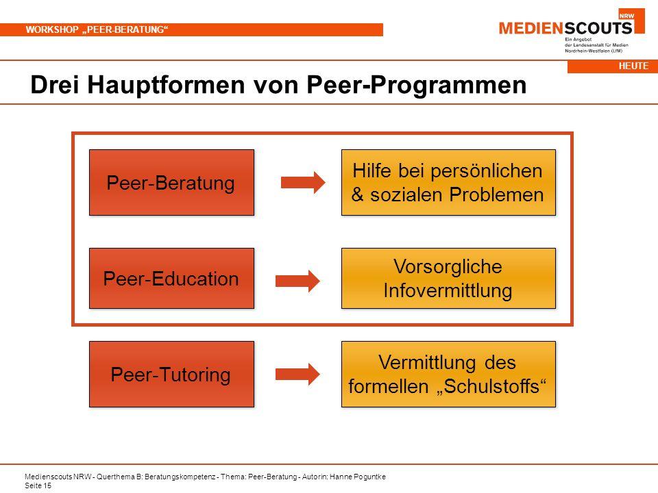 Drei Hauptformen von Peer-Programmen