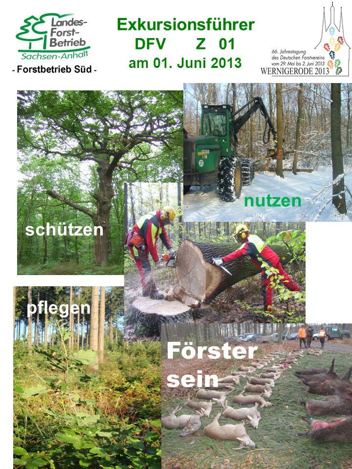 Exkursionsführer DFV Z 01 am 01. Juni 2013