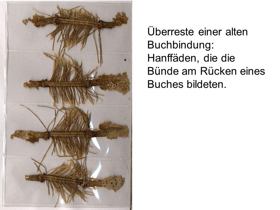 Überreste einer alten Buchbindung: Hanffäden, die die Bünde am Rücken eines Buches bildeten.