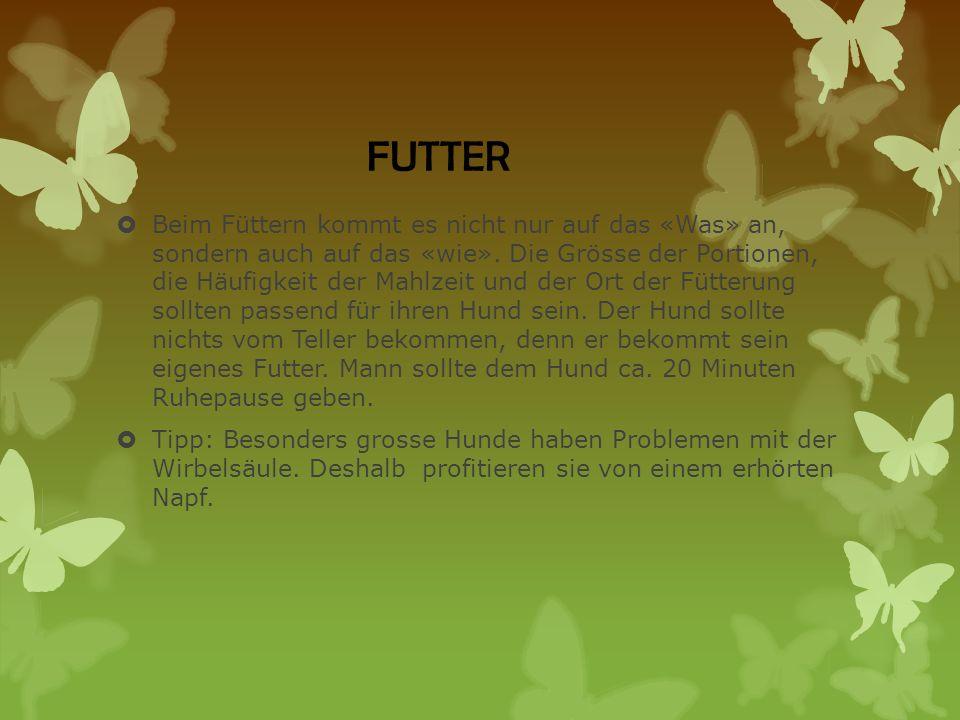 FUTTER