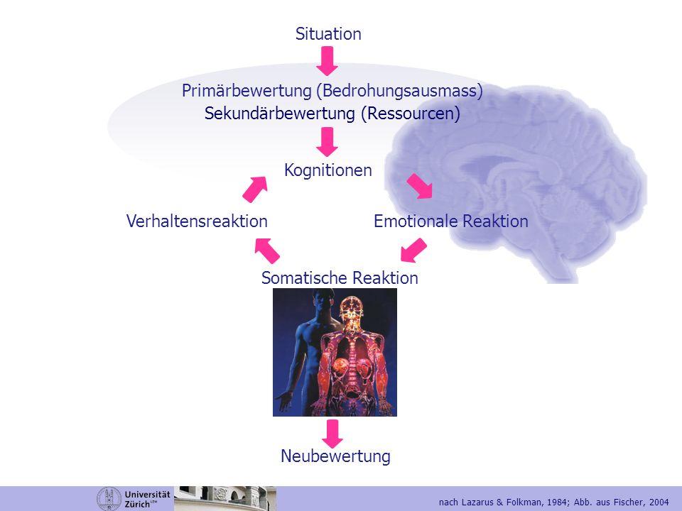 Primärbewertung (Bedrohungsausmass) Sekundärbewertung (Ressourcen)