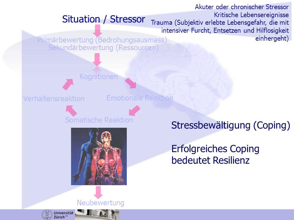 Stressbewältigung (Coping) Erfolgreiches Coping bedeutet Resilienz