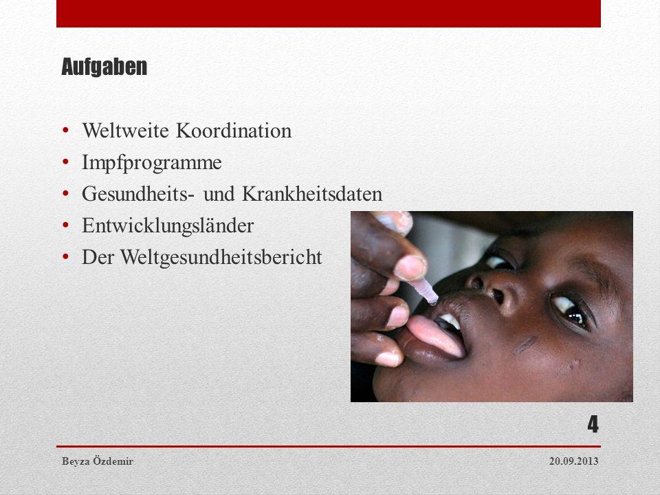 Weltweite Koordination Impfprogramme Gesundheits- und Krankheitsdaten
