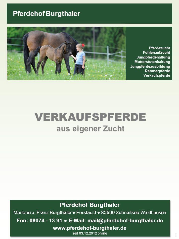 Pferdehof Burgthaler Pferdezucht ● Pferdeaufzucht